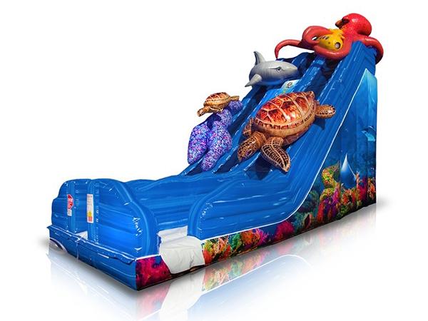 Ocean Inflatable Slide