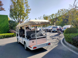 8 Seats Sightseeing Car For Sale