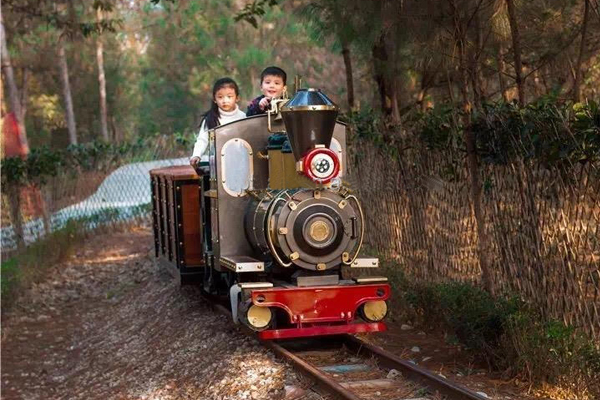 Small track sightseeing train